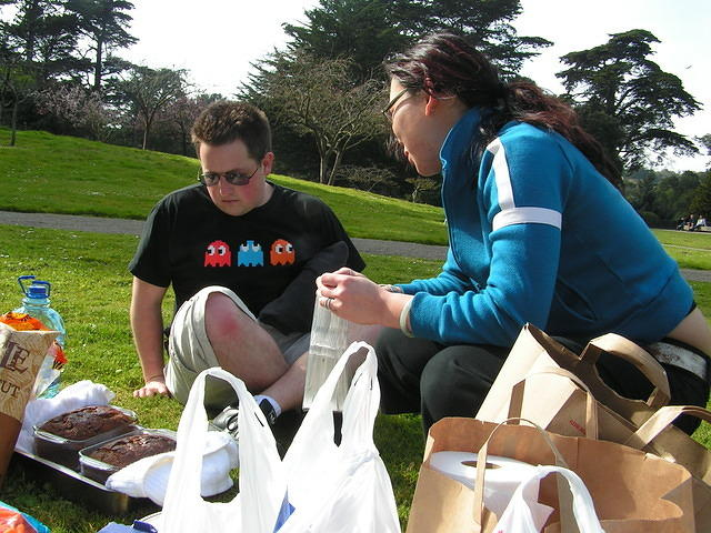 Picnic at Golden Gate Park.  It was overcast, but that's no impediment to a picnic, physics experiments, and large stinging welt