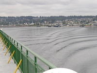View looking back at Edmonds from the ferry