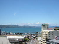 view from hotel in wellington