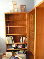 have now, amazingly, gotten the three bookcases in there and begun sorting.  on the floor there is papers, non-fiction, school s