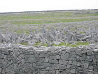 You know what Inishmore has a lot of?  Rocks, that's what.