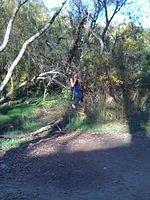 Swinging_at_Hidden_Lakes_142004.jpg