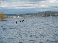 Ex Pier in Lake Washington from Sand Point