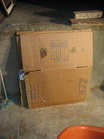 Carboard-Boxes-162520.jpg